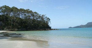 Bruny_Island_Tour_iPad_485x250_2